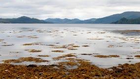 Fyne do Loch Foto de Stock Royalty Free