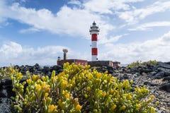 Fyr för El Toston i norden av ön av Fuerteventura Arkivbild