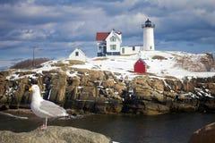 Fyr för ` för Nubble för uddeNeddick `, York, Maine Royaltyfri Foto