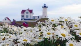 Fyr för ` för Nubble för uddeNeddick `, York, Maine Arkivbild