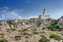 Fyr på Capotestaen, Sardinia, Italien Royaltyfria Foton