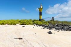 Fyr på den Espanola ön, Galapagos, Ecuador arkivbild