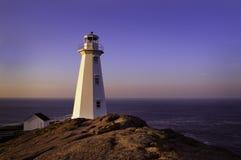 Fyr på uddespjutet, Newfoundland Royaltyfria Bilder