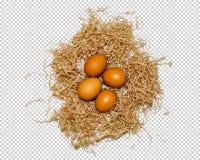 Fyra ägg ligger i redet, närbilden, png arkivfoton
