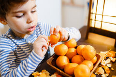 Fyra år pojke äter en mandarin Royaltyfri Foto