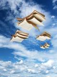 Fyra öppna böcker som över flyger Royaltyfri Fotografi