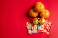Fyra apelsiner och två guld- svin royaltyfri foto