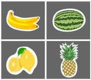 Fyra art av frukt Arkivfoton