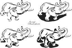 Fyra elefanter Arkivbilder
