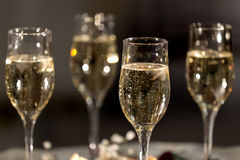 Fyra exponeringsglas med champagne Arkivbilder