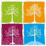 Fyra färgar säsonger Royaltyfri Bild