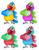Fyra färgrika papegojor Royaltyfri Foto