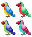 Fyra färgrika papegojor Arkivbilder