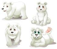 Fyra förtjusande isbjörnar Royaltyfria Bilder