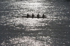 Fyra folk ro Royaltyfria Foton