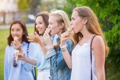 Fyra glade unga flickvänner som står i rad le äta lyckligt glass parkerar in royaltyfria foton
