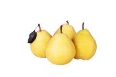 Fyra gula pears Royaltyfri Foto