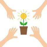 Fyra handarmar som når till det växande stora glänsande myntet för pengarträd med växten för dollartecken i krukan coins finansie Royaltyfria Foton