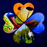 Fyra hjärtor som en abstrakt flerfärgad collage royaltyfria foton