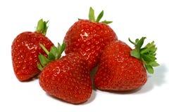 fyra jordgubbar Royaltyfri Bild