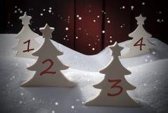 Fyra julgranar, snö, snöflingor, numrerar 1, 2, 3, 4 Arkivbild