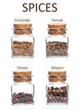 Krus av kryddor Royaltyfri Foto