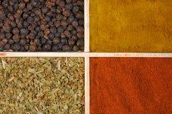 fyra kryddor Royaltyfria Bilder