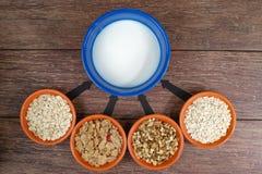 Fyra lilla bunkar med olika sädesslag och bunken med mjölkar, affärsstrategi, beslutsfattande, val Royaltyfri Fotografi