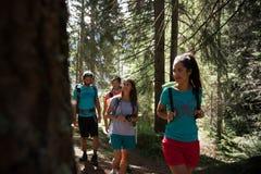 Fyra man och kvinna som promenerar fotvandra slingabanan i skogträn under solig dag Grupp av vänfolksommar arkivfoton