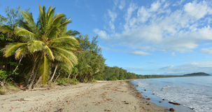 Fyra mil strand i port Douglas Queensland, Australien Arkivbilder