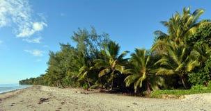 Fyra mil strand i port Douglas Queensland, Australien Arkivfoto