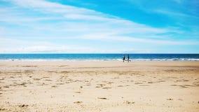 Fyra mil strand Port Douglas AUSTRALIEN Royaltyfri Foto