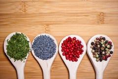 Fyra olika sorter av varma kryddor i en blandning av ingredienser Fotografering för Bildbyråer