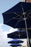 fyra paraplyer Fotografering för Bildbyråer