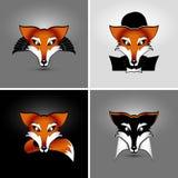 Fyra rävar Arkivbilder