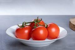 Fyra röda nya saftiga tomater Arkivbild