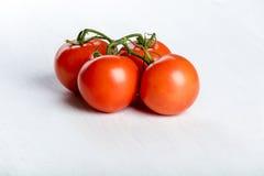 Fyra röda nya saftiga tomater Royaltyfria Bilder