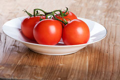 Fyra röda nya saftiga tomater Royaltyfri Fotografi