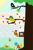 fyra säsonger genom hela tree Royaltyfria Bilder