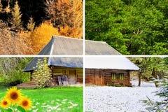 Fyra säsonger i ett foto arkivbild