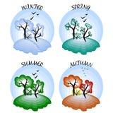 fyra säsonger Vinter, vår, sommar och höst Fyra olika typer av träd som isoleras på vit bakgrund Arkivbild