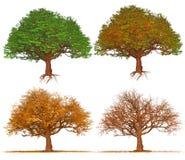 Fyra säsongträd som isoleras på vit bakgrund stock illustrationer