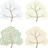 Fyra säsongträd, vektorillustration av abctract Arkivfoton