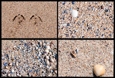 Fyra sandiga bakgrundstexturer Royaltyfri Fotografi