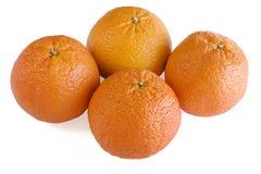 fyra scharlakansröda apelsiner Fotografering för Bildbyråer