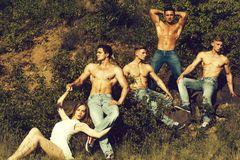 Fyra sexiga muskulösa män och kvinna fotografering för bildbyråer
