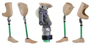 Fyra sikter av den prosthetic ben och knämekanismen Fotografering för Bildbyråer