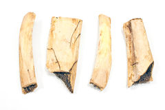 Fyra stycken av ben för nötköttstöd Arkivfoton
