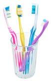 Fyra tandborstar i exponeringsglas Fotografering för Bildbyråer