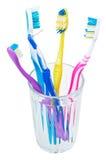 Fyra tandborstar och interdental borste i exponeringsglas Royaltyfria Bilder